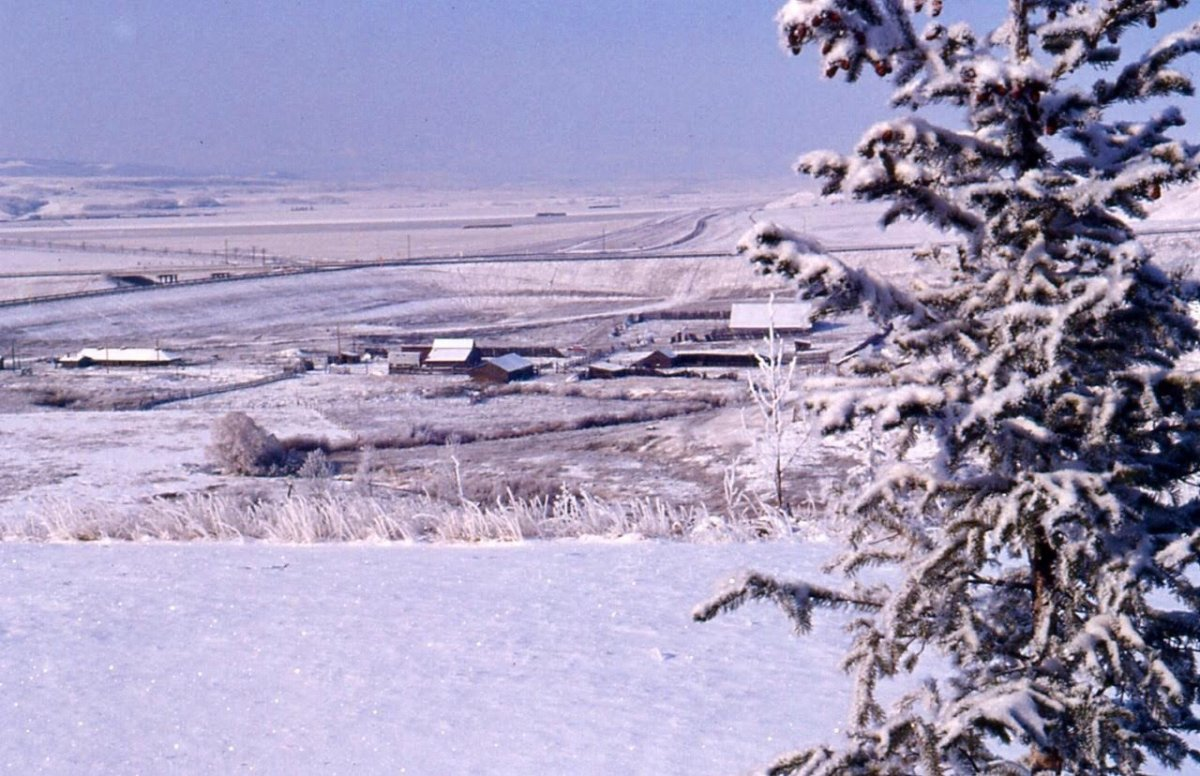 Cochrane Ranche 1977 Photo